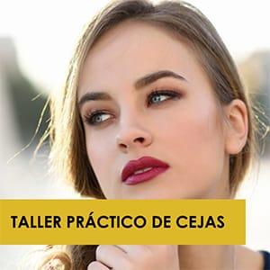 Taller Práctico Cejas Micropigmentación Chile